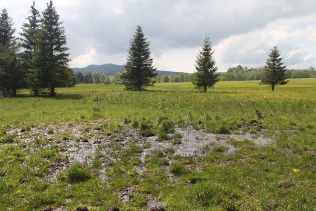 Okolo Podhory přes vody, lesy a hory