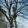 Sedlec - sloup se sochou Panny Marie | poškozený mariánský sloup - březen 1996