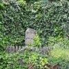 Jeřeň - křížový kámen | terasa s křížovým kamenem - červenec 2009