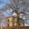 Branišov - kostel sv. Blažeje | ruiny kostela sv. Blažeje od jihozápadu - duben 2013