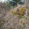 Činov - Höpperbirlova kaple | zarostlé trosky kamenné Höpperbirlovy kaple jižně od dnes již zcela zaniklé vsi Činov - březen 2017