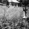 Březová - hřbitovní kaple   kaple na zanedbaném hřbitově ve 2. polovině 20. století