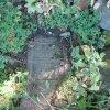 Luka - židovský hřbitov | zachovalý židovský náhrobek - září 2013
