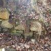 Dubina - tvrz | gotické zdivo zaniklé tvrze z lomového kamene - březen 2014
