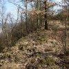 Radošov - hradiště Jazyk (Stengelberg) | severní okraj náhorní plošiny hradiště - březen 2014