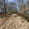Radošov - hradiště Jazyk (Stengelberg) | novodobá cesta stoupající ze šíje k akropoli - březen 2014