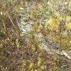 Žlutice - hrad Nevděk | dochované zdivo z lomového kamene rozvalených objektů jádra bývalého hradu - duben 2014