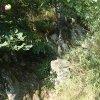 Protivec - železný kříž   obnovený kříž u Pekelského mlýna v údolí Velké Trasovky u Protivce - červenec 2015