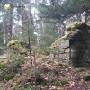 Prameny - kaple Panny Marie | zarostlé trosky kaple Panny Marie na vrchu Kalvárie u obce Prameny - listopad 2006 (foto Michal Valenčík)