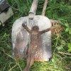 Lažany - Michlův kříž | nalezaná litinová plastika Ukřižovaného Krista - srpen 2016