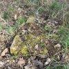 Lažany - Michlův kříž | situace dohledaného objektu - duben 2016