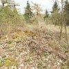 Bražec - hrad Kostelní Horka | situace na zarostlé ploše bývalého hradu Kostelní Horka s patrnými stopami po archeologickém výzkumu z let 1986-1989 - duben 2014