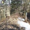 Bražec - hrad Kostelní Horka | průběh příkopu a vnějšího valu na severozápadní straně opevněné lokality na Kostelní Horce - březen 2017