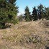 Bražec - hrad Kostelní Horka | situace na ploše jádra bývalého hradu Kostelní Horka po revezním archeologickém výzkumu z let 2015-2016 - březen 2017