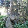 Boč - pomník obětem 1. světové války | boční strana pomníku padlým v Boči - říjen 2013