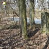 Bohuslav - pomník obětem 1. světové války | zchátralý pomník obětem 1. světové války nad horním návesním rybníkem ve vsi Bohuslav - březen 2018