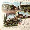 Jelení (Hirschenstand) | kolorovaná kolážová pohlednice obce Jelení (Hirschenstand) z roku 1899