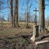 Javorná - železný kříž | obnovený litinový kříž při silnici z Javorné do Rybničné - březen 2017