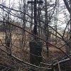 Javorná - železný kříž | zarostlý zchátralý kříž u Javorné - březen 2014