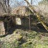 Sovolusky - Rohrerův mlýn | původní vnitřní dvorek zarostlý náletovými stromy v areálu zanoklého Rohrerova mlýna u Sovolusk - březen 2019