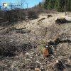 Dolní Valov - boží muka | torzo rozvalených božích muk při cestě do zaniklé vsi Horní Valov - březen 2017
