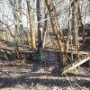 Bražec - Horní mlýn | rozvaliny hlavní mlýnské budovy na východní straně areálu bývalého Horního mlýna u Bražce - březen 2017
