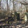 Bražec - Dolní mlýn | zříceniny hlavní mlýnské budovy v areálu zaniklého Dolního mlýnu u Bražce - březen 2017