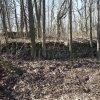 Bražec - Dolní mlýn | pečlivě vyskládaná zeď z lomového kamene v areálu zaniklého Dolního mlýnu u Bražce - březen 2017