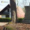 Pávice - železný kříž | zchátralý podstavec kříže mezi dvojicí javorů na návsi uprostřed vsi Pávice - březen 2017