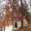 Jáchymov - kaple sv. Barbory | jihovýchodní boční stěna kaple - listopad 2009