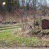 Jesínky - kaple sv. Jana Nepomuckého | zarostlé pozůstatky zbořené obecní kaple sv. Jana Nepomuckého na bývalé návsi v Jesínkách - březen 2017