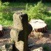Nivy - smírčí kříž | smírčí kříž v lese u vsi Nivy - květen 2009