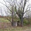 Maroltov - kaplička | kaplička na rozcestí dvou cest západně od Maroltova - říjen 2009