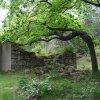 Nejdek - kaple Božího hrobu | jižní stěna bývalé kaple Božího hrobu - červen 2009