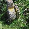 Protivec - smírčí kříž | smírčí kříž a mlýnský kámen - červen 2009