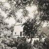 Mariánská - kostel Nanebevzetí Panny Marie | pohled na poutní kostel z farní zahrady v době před rokem 1945