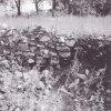 Doupov (Hradiště) - zámek | poslední zbytky zdiva zámku v 80. letech 20. století