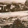 Oleška (Olleschau) | historická pohlednice obce z doby před rokem 1945