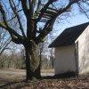 Verušice - Tuchtova kaple   klasicistní Tuchtova kaple od západu - březen 2011