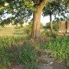 Dlouhá - pomník obětem 1. světové války | torzo zdevastovaného pomníku obětem 1. světové války v zaniklé vsi Dlouhá po vyřezání náletových křovin - srpen 2018
