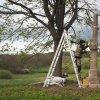Dlouhá - pomník obětem 1. světové války | zlacení nápisů a výzdoby obnoveného pomníku obětem 1. světové války na návrší Heinberg nad zaniklou vsí Dlouhá - duben 2019
