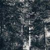 Karlovy Vary - lesní pobožnost | lesní pobožnost na snímku z roku 1940