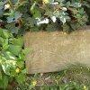 Kozlov - sousoší Nejsvětější Trojice | zchátralý trojboký podstavec sousoší Nejsvětější Trojice v zahradě za kostelem sv. Petra a Pavla ve Žluticích - srpen 2015
