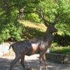 Karlovy Vary - plastika jelena | litinová plastika jelena - září 2011