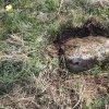 Močidlec - Mertlův kříž | snad dochovaná základová deska odstraněného vysokého dřevěného Mertlova kříže u Močidlece - duben 2016