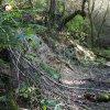 Mlyňany (Lindles) | bývalá cesta směrem na Přestání v zaniklé vsi Mlyňany (Lindles) - září 2015