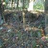 Mlyňany (Lindles) | kamenná zídka nad cestou v zaniklé vsi Mlyňany (Lindles) - září 2015