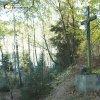 Dolánky - železný kříž | obnovený kříž nad bývalým rozcestím ve svahu nad zaniklou osadou Dolánky - říjen 2015