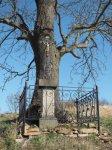 Herstošice - železný kříž | Herstošice - železný kříž