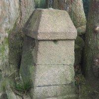 Ehrlich - železný kříž